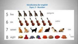 Vocabulary For English - Topic 2 Numbers!