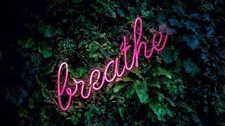 Download Lagu Justin Bieber Type Beat x Shawn Mendes Type Beat - Breathe / Pop Type Beat Mp3