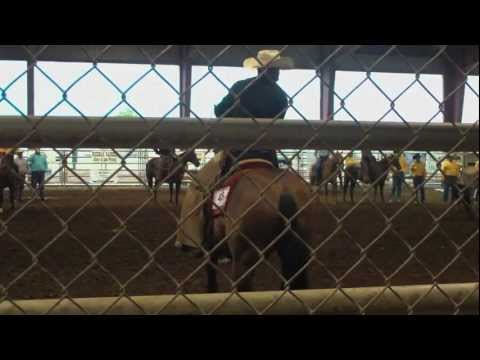 Texas Rodeo Working Cowboys