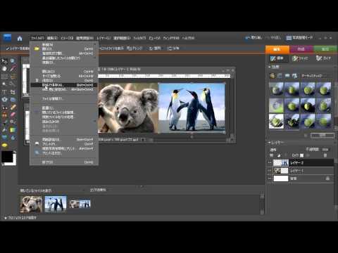 Photoshop Elements 7 - 複数画像の合成方法
