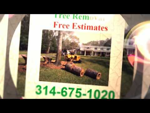 (314) 675-1020 Free Estimates Tree Service Wildwood MO 63038