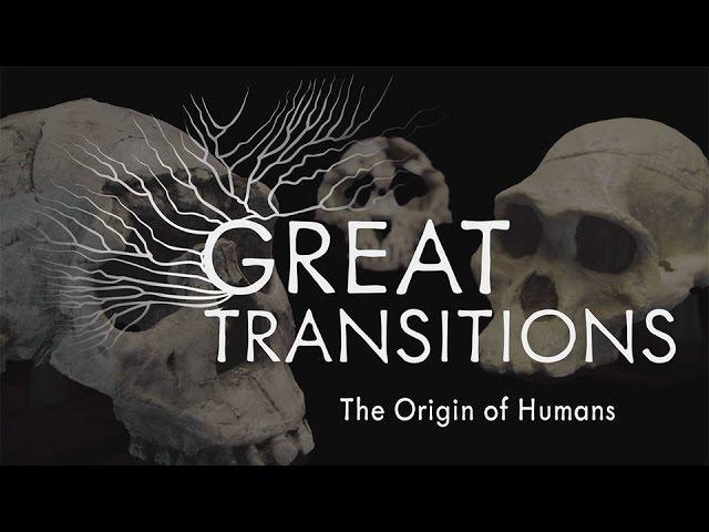 great transitions the origin of humans. Black Bedroom Furniture Sets. Home Design Ideas