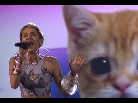 "Miley Cyrus Performs ""Wrecking Ball"" with Crying Space Kitten American Music Awards 2013"
