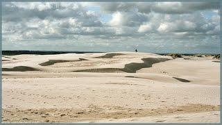 Rabjerg Mile - движущаяся песчаная дюна, Скаген, Дания / Råbjerg Mile, Skagen, Denmark