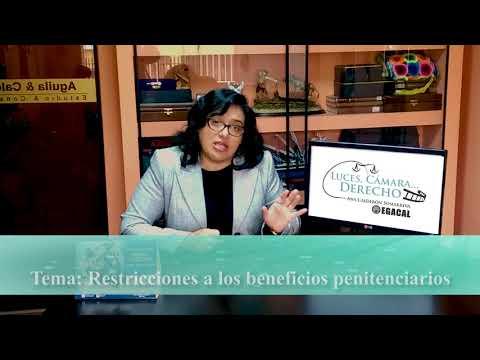 Programa 34 - Restricciones a los beneficios penitenciarios - Luces Camara Derecho - EGACAL