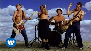 Red Hot Chili Peppers [Official Music Video]「Californication」