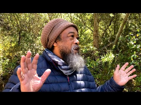 Mooji Video: How to Overcome Mind Attacks