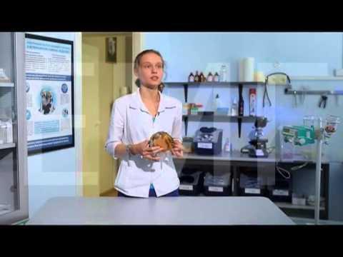 Отслоение пластин у черепах