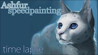Ashfur Speedpainting - Time lapse