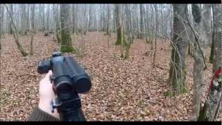 Quadruplé De Sangliers En Chasse En Battue Dans Les Vosges, 5 Sangliers En 2 Min! A Voir En HD!