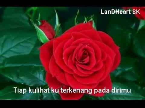 Sekuntum Mawar Merah - Elvy Sukaesih