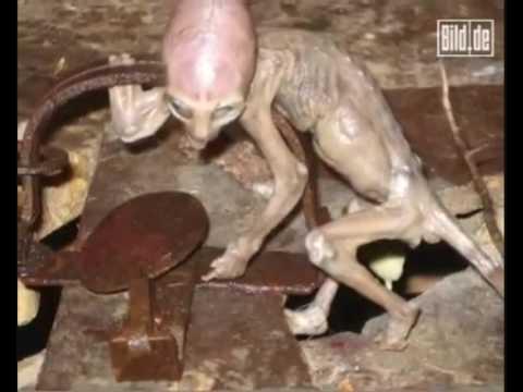 alieni, come ignorare la loro esistenza?