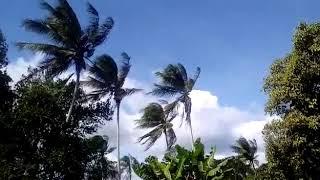 A ventania foi forte hoje (22) em Alagoinhas (BA). As imagens são do usuário Vinicius Silva. Quer ver o vídeo de sua cidade aqui em nosso canal do Youtube, site e redes sociais? É só gravar a condição do tempo e mandar para o nosso Whatsapp: 11 9 9420-7548.