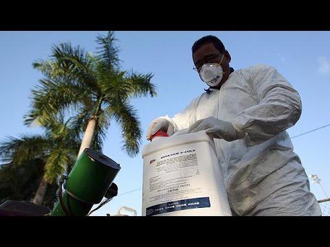 ΠΟΥ: «Εκατομμύρια άνθρωποι θα προσβληθούν από τον ιό Ζίκα»