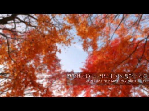 (55분)잔잔한 피아노 새노래 기도음악 (55min)Calm Piano New Song Pray Music