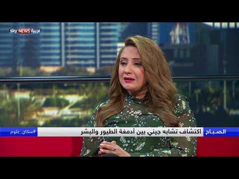 العرب اليوم - شاهد:اكتشاف تشابه جيني بين أدمغة الطيور والبشر
