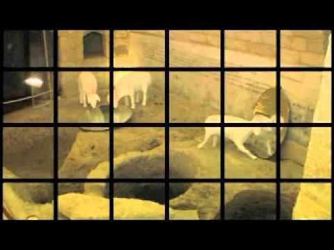 YouTube Video - Lorenzo Polimeno, Condizione Marginale, video, 2010