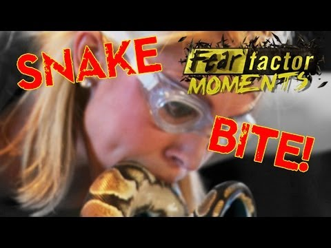 Fear Factor Moments | Snake Mouth Snatch