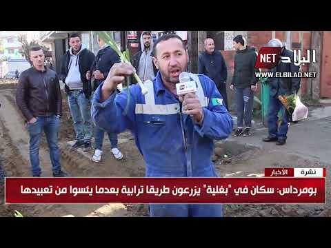 طريقة احتجاج فريدة من نوعها في الجزائر..!