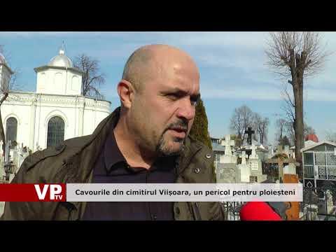 Cavourile din cimitirul Viișoara, un pericol pentru ploieșteni
