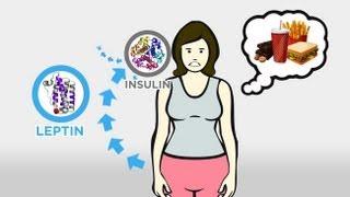 WEBucation Wednesday: The Skinny on Obesity (Episode 3)