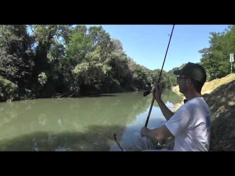 Italian Fishing TV - Shimano - Barbel feeder ad Umbertide