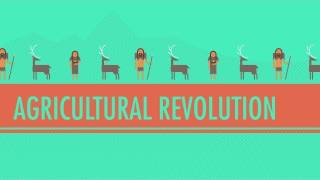 Download Youtube: The Agricultural Revolution: Crash Course World History #1