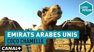 Video Émirats Arabes Unis : Coco chamelle - L'Effet Papillon - CANAL+ MP3, 3GP, MP4, WEBM, AVI, FLV Juni 2018