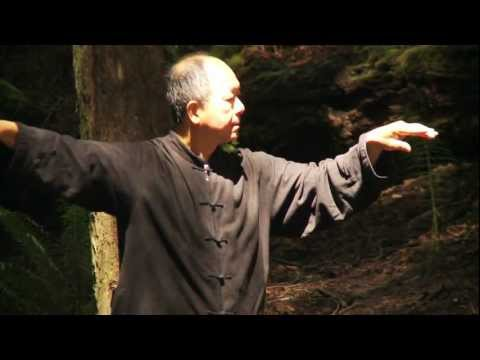 Video of Yang Tai Chi for Beginners 1