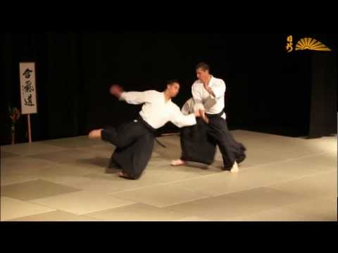Aikido - various attacks and techniques