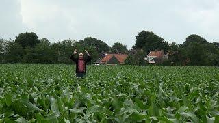 Dolen door maïsdoolhof in Twijzel