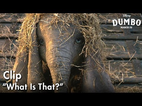 "Dumbo - ""What Is That?"" Clip?>"