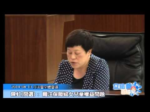 陳虹 立法會全體會議 20140813