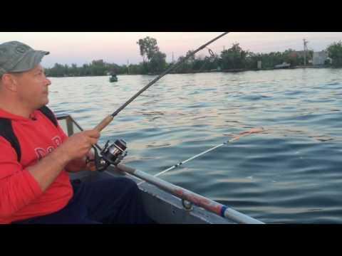 запрет на рыбалку в херсонской области 2016