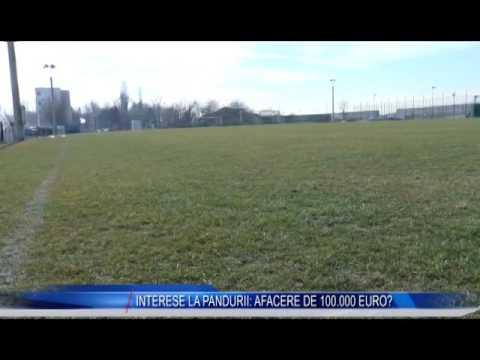 INTERESE LA PANDURII: AFACERE DE 100.000 EURO?