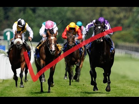 How To Make Money With Horse Racing,Tips,Services ,Leads and Picks,Showing How To Make Money Fast