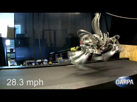 World  s Fastest Legged Robot