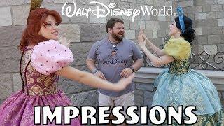 Video I Scared Cinderella's Step Sisters!   Disney World Impressions MP3, 3GP, MP4, WEBM, AVI, FLV Juni 2018