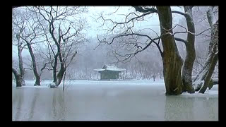 """Etta Scollo - I Tuoi Fiori (Kim Ki Duk ''Bad Guy"""" OST)"""
