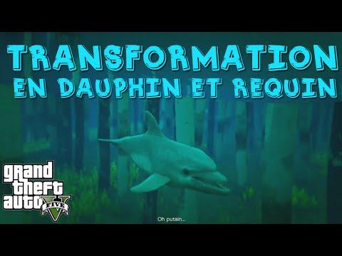 Gang de Requins Playstation 2