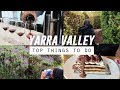 TRAVEL GUIDE: Yarra Valley Top Attractions and Wineries (Melbourne)