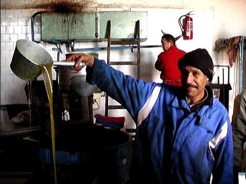 Oliven-Ölmühle bei Zarzis: Tunesien - Djerba - Zarz ...