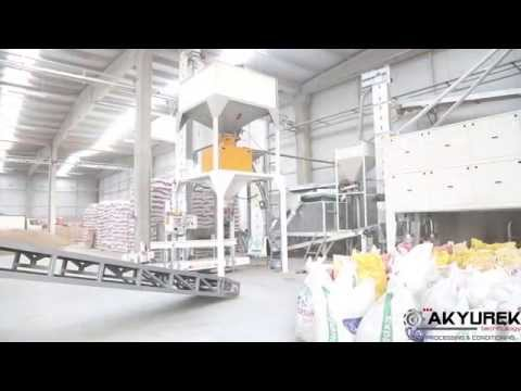 Turnkey Wheat and Barley Seed Processing Plant