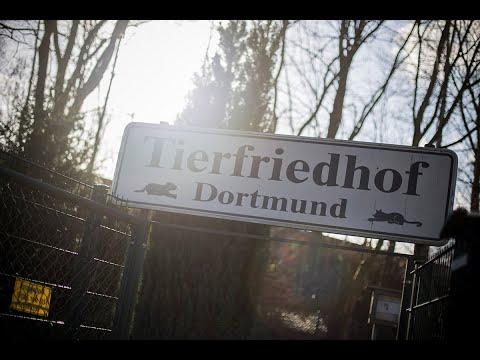 Dortmund Tierfriedhof Dortmund Image-Film