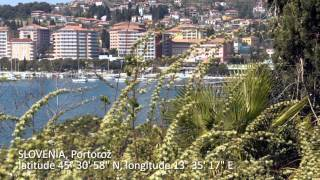 Portoroz Slovenia  city photos gallery : Travel log Portoroz Slovenia