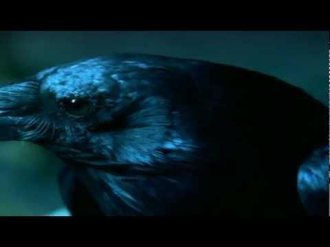 Ravenswood Season 1 (Teaser)