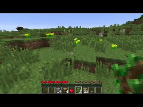 Minecraft Biomes: Plains