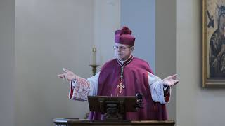 Video Feast of the Dedication of the Basilicas of Sts. Peter and Paul, by Bishop Donald J. Sanborn MP3, 3GP, MP4, WEBM, AVI, FLV Maret 2019