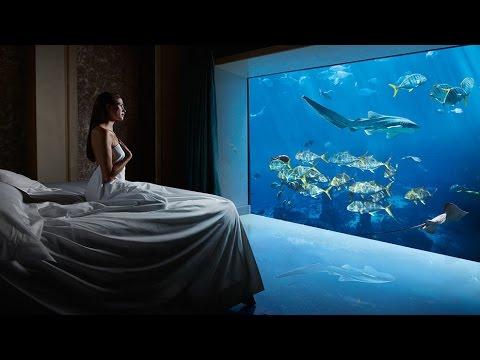 Tour alla suite subacquea di Dubai che costa 10 mila dollari a notte