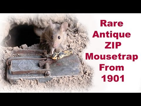 Rare Antique ZIP Mousetrap From 1901. Mousetrap Monday.